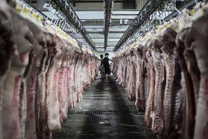 Trung Quốc có thể nhập khẩu thịt lợn Mỹ nhiều kỷ lục trong 2019