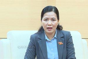 Đbqh Đỗ Thị lan: du lịch Việt Nam chưa phát huy hiệu quả tiềm năng, lợi thế
