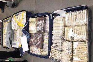 Nữ du khách chuyển lậu hơn 3.000 điếu xì gà từ Cuba về Đà Nẵng