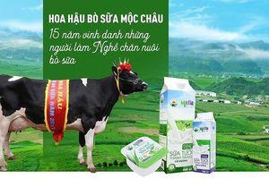 Vì sao 'hoa hậu bò sữa Mộc Châu' từ chối Vinamilk ?