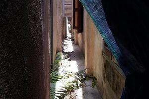 Hủy án vụ khoảng hở rắc rối giữa 2 nhà hàng xóm