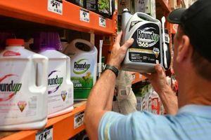 Thêm chứng cứ về tác hại trực tiếp của thuốc diệt cỏ Monsanto sản xuất