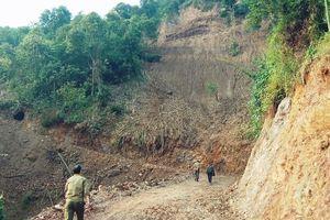 Cần sớm có phương án đối với dự án chăn nuôi tại xã Đồng Tiến