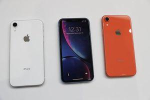 iPhone XR thống trị thị trường smartphone Mỹ