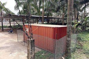 Lô gỗ sưa 'trăm tỷ' ở Hà Nội bán đấu giá thế nào?