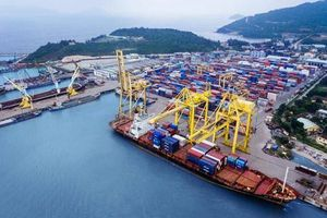 Hãng vận tải đến từ Singapore vừa chi gần 400 tỷ đồng để sở hữu 20% Cảng Đà Nẵng