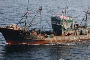 Hàn Quốc phát hiện 2 tàu cá Trung Quốc nghi đánh bắt trái phép