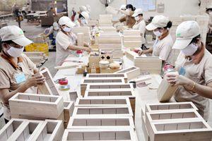 Phấn đấu đưa kim ngạch xuất khẩu gỗ và lâm sản ngoài gỗ đạt 11 tỷ USD