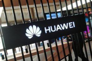 CEO Huawei: 'Cảm ơn Mỹ đã quảng cáo giúp chúng tôi'