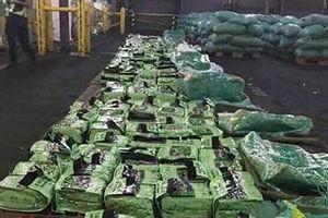 Đường dây ma túy 'khủng' từ Tam Giác Vàng qua Việt Nam bị triệt phá như thế nào?