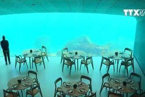 Kỳ thú nhà hàng nằm lơ lửng ở độ sâu 30m trong nước biển