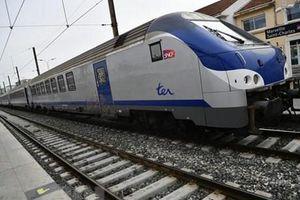 Đường sắt tốc độ cao Bắc-Nam sẽ được trình Quốc hội vào cuối năm 2019