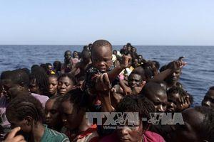 Libya bắt giữ trên 100 người nhập cư bất hợp pháp