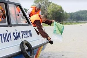 TP.HCM thả 100 nghìn con cá lăng đuôi đỏ tái tạo nguồn thủy sản