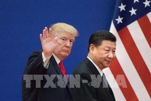 Đàm phán thương mại Mỹ - Trung đang đạt được tiến triển lớn