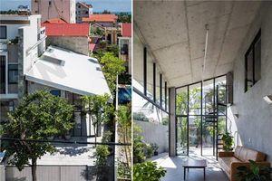 Ngắm nhà đơn lập mộc mạc đạt giải kiến trúc quốc gia