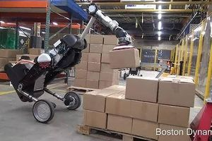 Robot hình chim xếp hàng hóa trong tích tắc