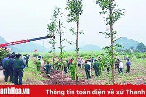 Đẩy mạnh công tác trồng, chăm sóc, bảo vệ rừng