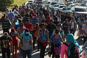 Mỹ quyết gửi trả người di cư bất hợp pháp trở lại biên giới Nam Mexico