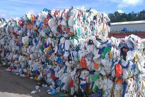 TP.HCM: Gần 2.000 container phế liệu 'vô chủ' chất đống ở cảng