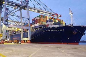 Cảng Quốc Tế Cái Mép được đánh giá cao về thành tích khai thác năm 2018 giữa các cảng