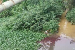 Dòng nước đổi màu như 'tắc kè hoa' ở Dương Nội