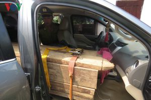 Bắt giữ đối tượng dùng xe bán tải gắn biển số giả chở gỗ lậu
