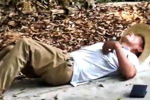 Cầm đầu rắn hổ mang chúa chụp ảnh, người đàn ông TQ bị cắn chết