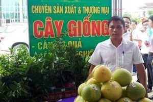 Vườn Ươm Việt và gương sáng Trần Kim Việt