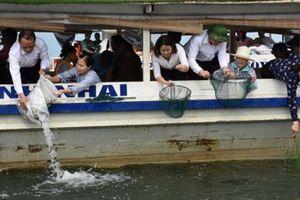 Cần Thơ sẽ thả 200.000 giống thủy sản về tự nhiên