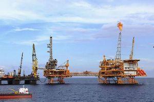 PV Drilling điều chỉnh lợi nhuận tăng gần 10 tỷ đồng sau kiểm toán