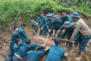 Việt Nam cần hàng chục tỷ USD và 100 năm để dọn sạch bom mìn