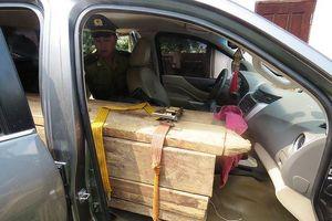 Quảng Bình: Bắt xe bán tải lắp biển giả, vận chuyển gỗ lậu