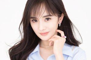 Dương Mịch, Lưu Diệc Phi và Cảnh Điềm: Nữ diễn viên nào xuất hiện nhiều nhất trong giải thưởng Cây chổi vàng?