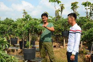 Thanh niên Tân Khánh Đông giúp nhau trồng và tiêu thụ hoa kiểng