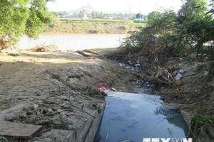 Gia Lai: Người dân phản ánh nhà máy xả thải gây ô nhiễm môi trường