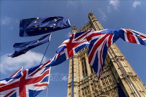 EP ủng hộ miễn trừ thị thực cho công dân Anh sau Brexit