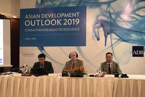 ADB dự báo kinh tế Việt Nam tăng trưởng 6,8% năm 2019, tăng giá điện và xăng là 'cần thiết, tích cực'
