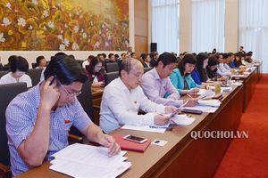 Đại biểu Quốc hội tranh luận quy định về sách giáo khoa