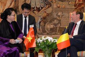 Chủ tịch Quốc hội hội kiến Chủ tịch Hạ viện Vương quốc Bỉ