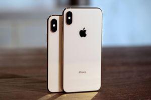 Người dùng thích iPhone nhỏ sắp có lựa chọn 5,42 inch