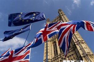 Ủy ban châu Âu: Nước Anh đang tiến gần đến một Brexit cứng