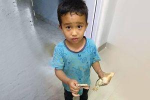 Vô tình làm gà con bị thương, cậu bé đưa gà đi bệnh viện với tất cả số tiền mình có