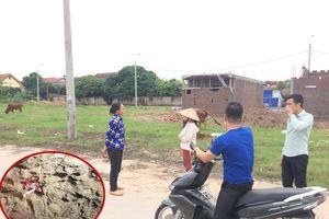 Vụ bé trai 7 tuổi bị chó cắn tử vong ở Hưng Yên: 'Tôi hét khản cả tiếng nhưng đàn chó không hề bỏ chạy'