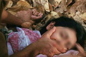 Hà Nội: 4 thanh niên đi trộm chó rồi chặn đầu xe bắt hai thiếu nữ vào rừng keo hiếp dâm tập thể