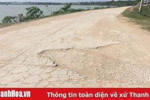 Mặt đê sông Chu, sông Mã: Nhiều đoạn xuống cấp nghiêm trọng