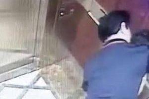 Vụ Viện phó VKS 'nựng' bé gái trong thang máy: BQL chung cư nói gì?