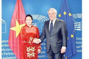 Việt Nam sẽ xem xét kỹ lưỡng những khuyến nghị của EU, EP