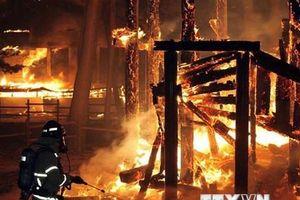 Hàn Quốc điều trực thăng dập vụ cháy rừng bất ngờ tại Deagu