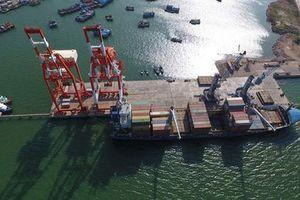 Cảng Quy Nhơn không tăng vốn điều lệ để 'làm khó' Vinalines